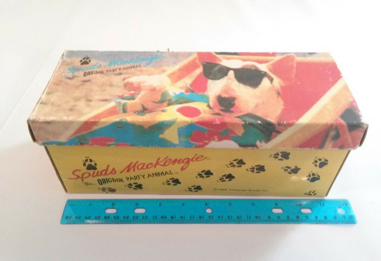 Spuds Mackenzie Empty Shoe Box Only Budweiser Bud Light Anheuser